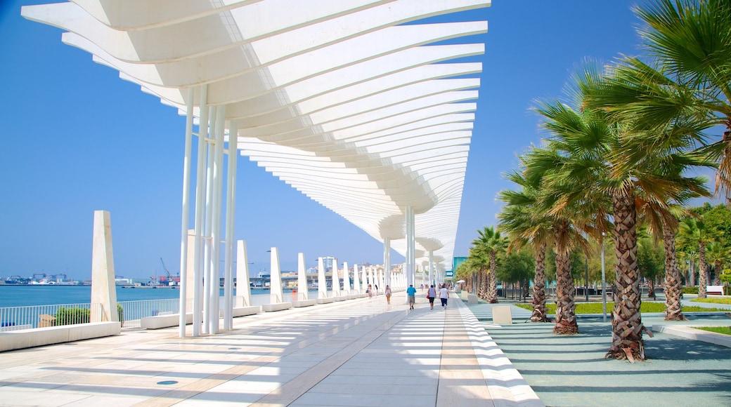 Málaga toont een baai of haven, moderne architectuur en straten