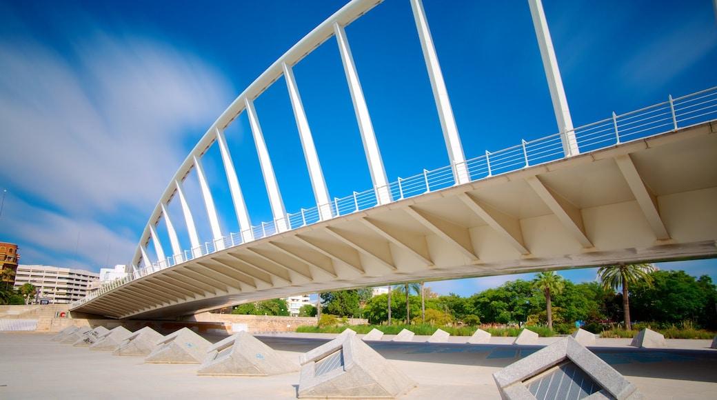 Valencia featuring a bridge, modern architecture and a city