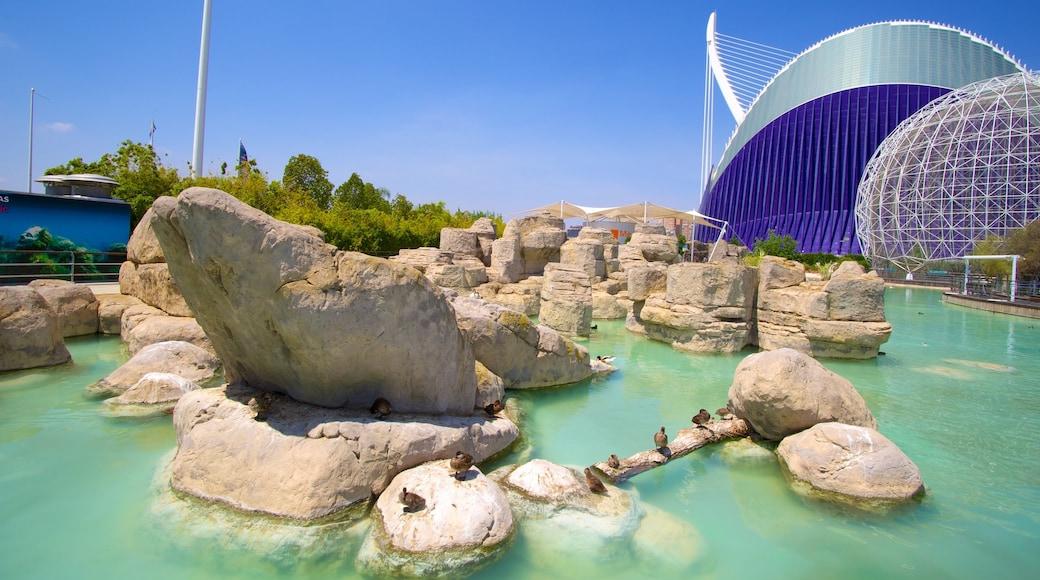La Ciudad de las Artes y las Ciencias mit einem Teich und moderne Architektur