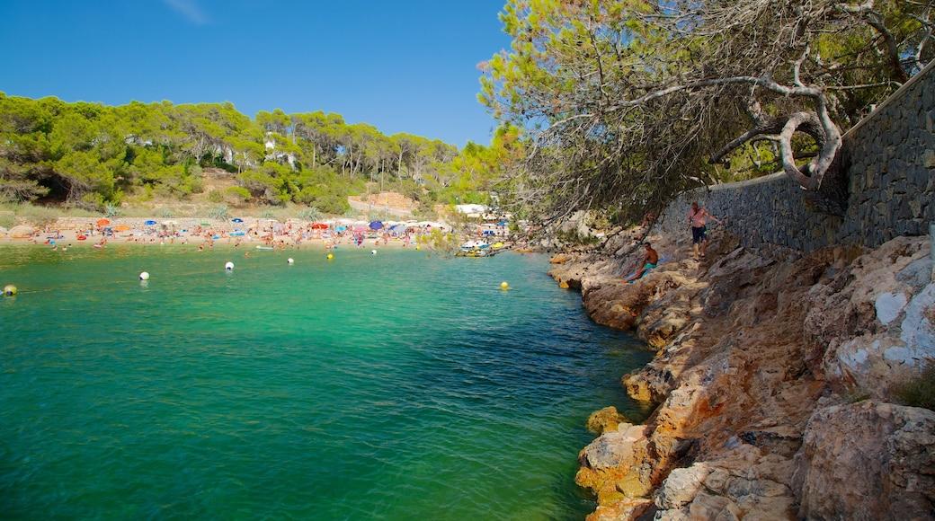 Cala Gració que incluye litoral accidentado, vistas panorámicas y una playa de arena