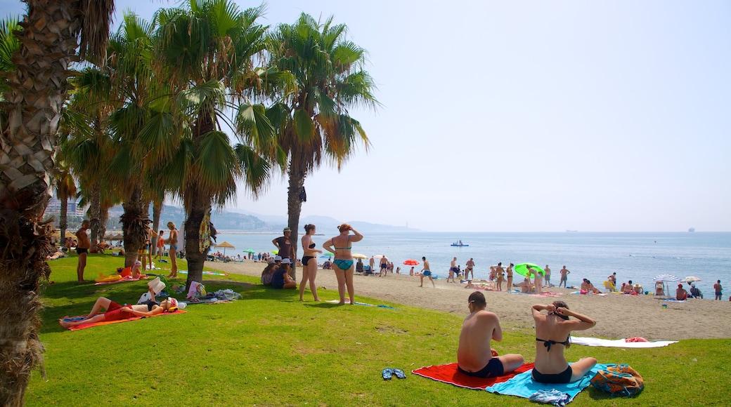 Playa de la Malagueta som visar en sandstrand, tropisk natur och picknick