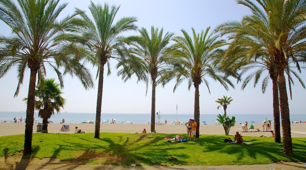 Playa de la Malagueta som visar tropisk natur och en sandstrand