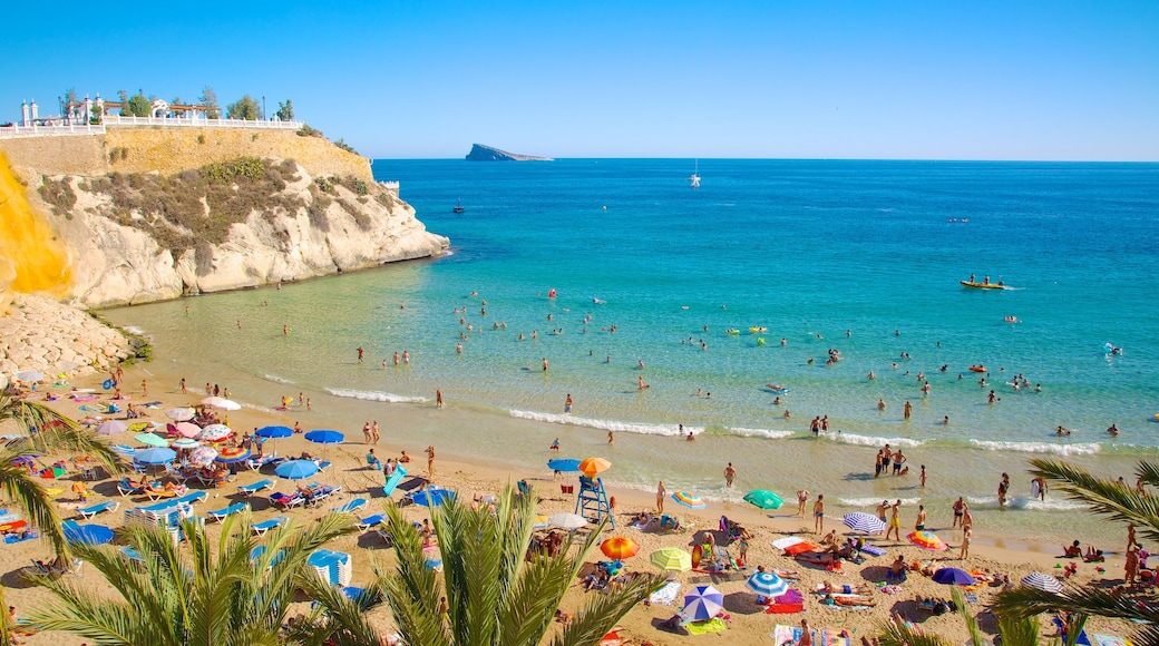 Benidorm featuring a beach and swimming as well as a large group of people