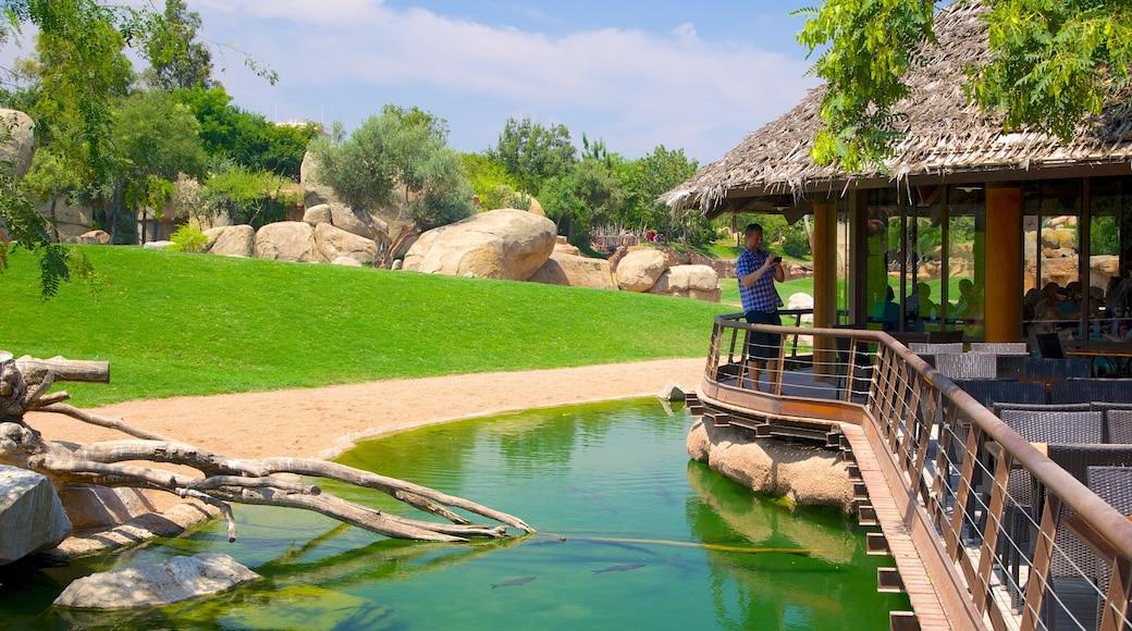 Erlebnis-Zoo Bioparc mit einem Zootiere sowie einzelner Mann