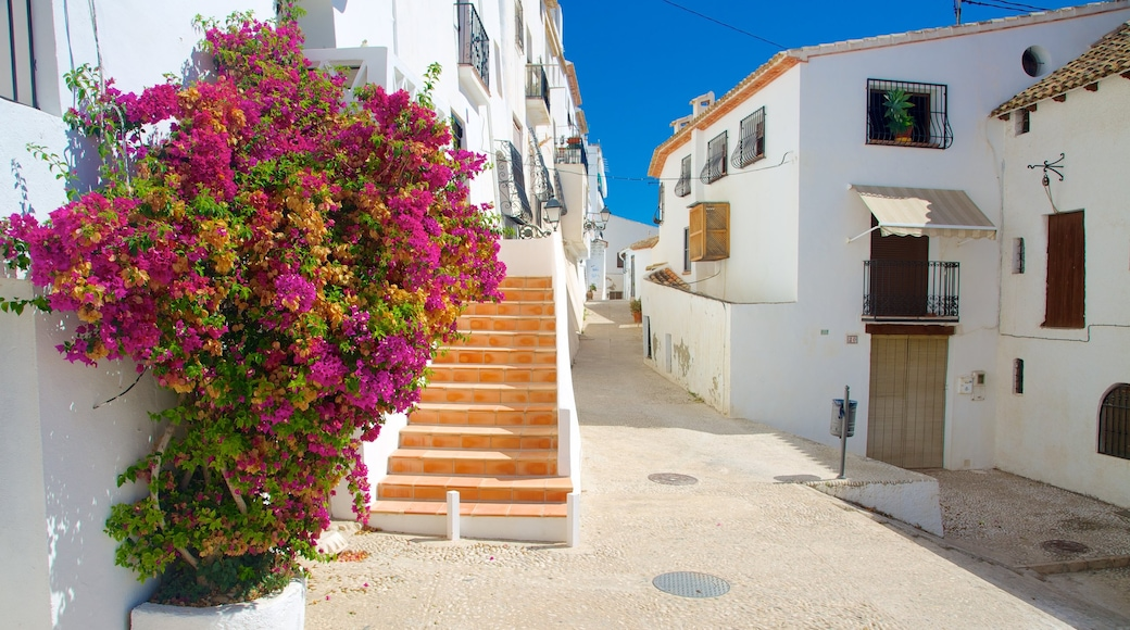 Altea showing street scenes, a house and flowers