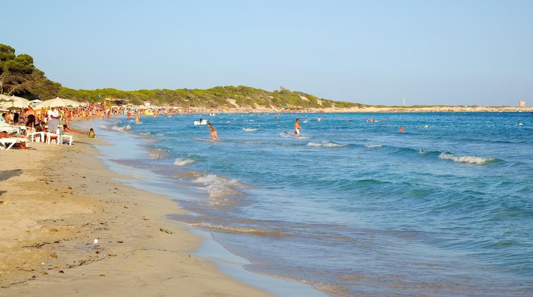 Spiaggia di Las Salinas caratteristiche di spiaggia sabbiosa e nuoto