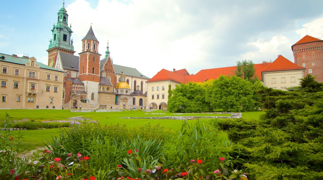 Wawel Castle showing château or palace, heritage architecture and a park
