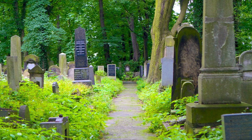 Cementerio judío mostrando un cementerio