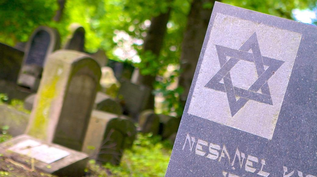 Cementerio judío mostrando un cementerio y señalización
