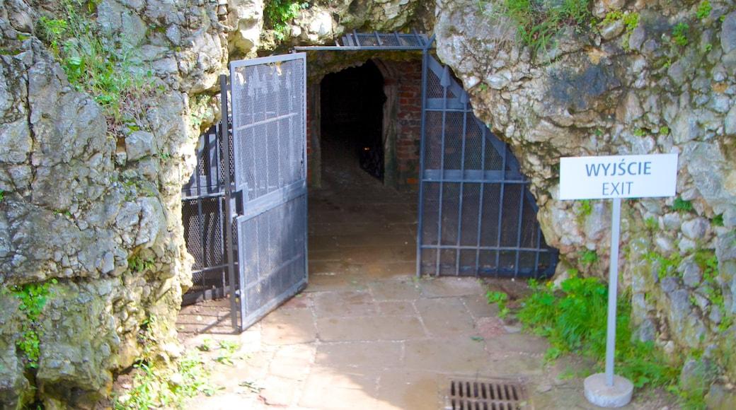 Grotte du Dragon mettant en vedette grottes et signalisation