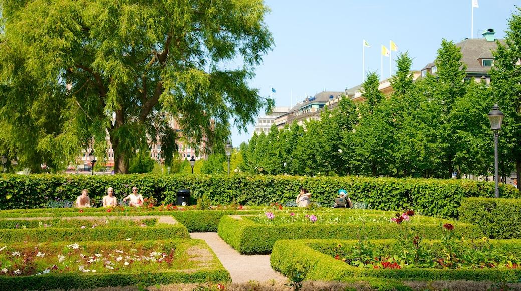 King\'s Garden featuring a garden and flowers
