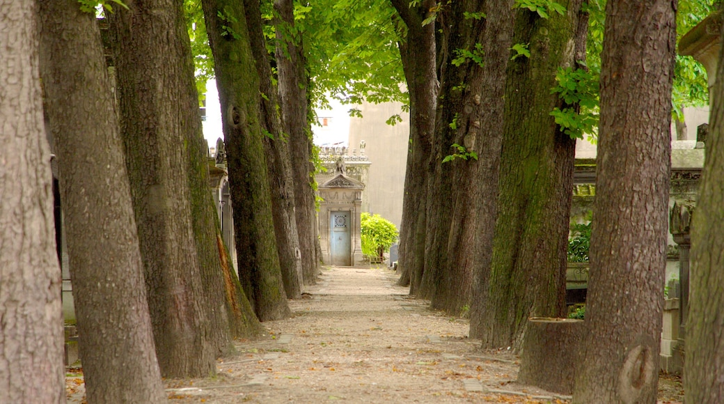 Pere Lachaise Cemetery showing a cemetery