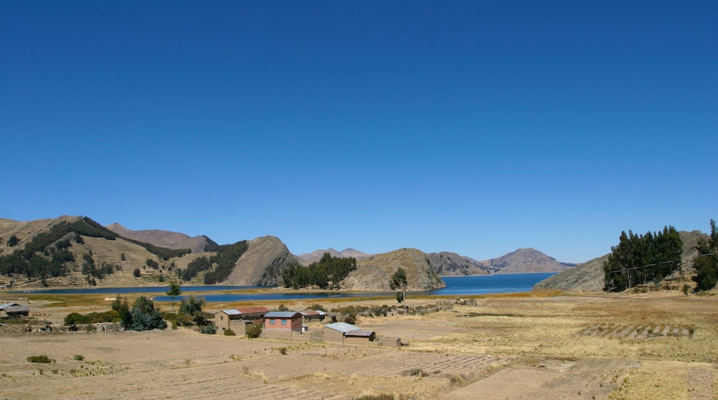 Lake Titicaca - Puno showing tranquil scenes and a lake or waterhole