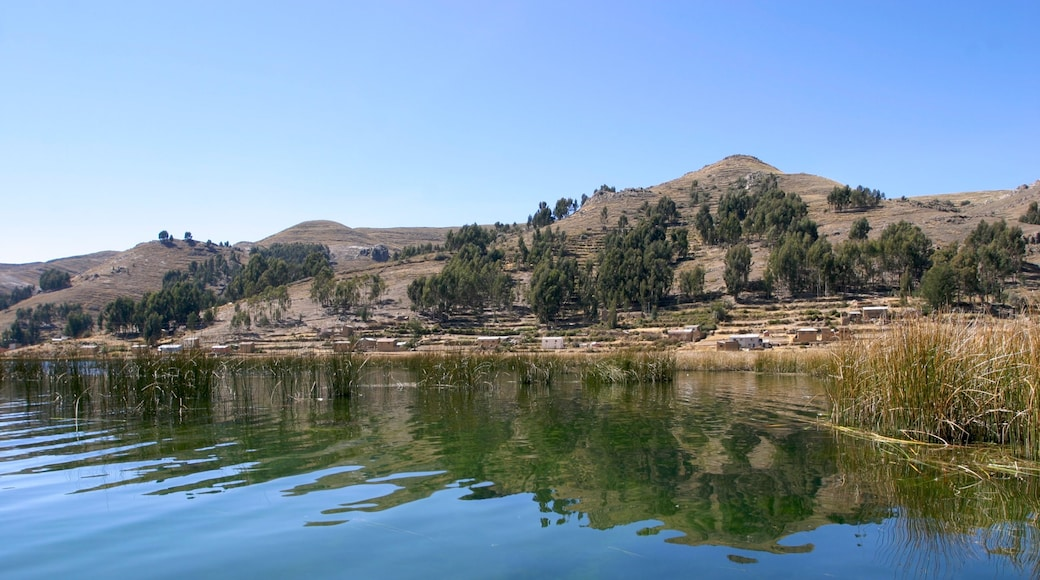 Lake Titicaca - Puno showing a lake or waterhole and tranquil scenes