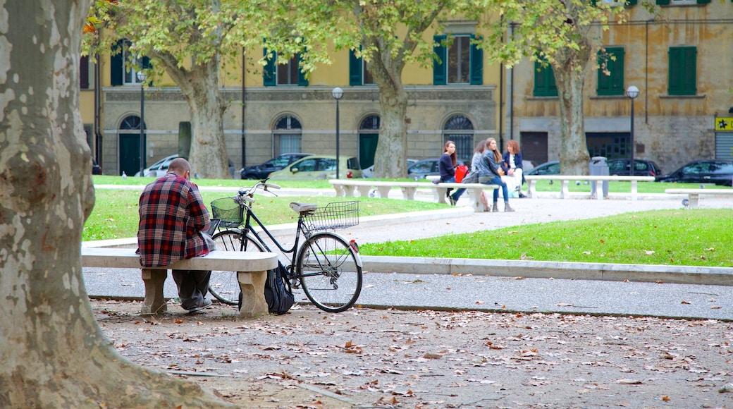 ปิซา ซึ่งรวมถึง สวนสาธารณะ และ ขี่จักรยาน ตลอดจน ผู้ชาย