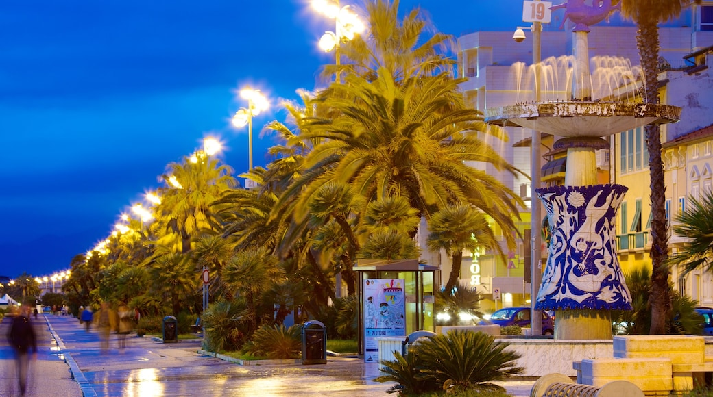 Viareggio qui includes scènes de rue, scènes de nuit et scènes tropicales