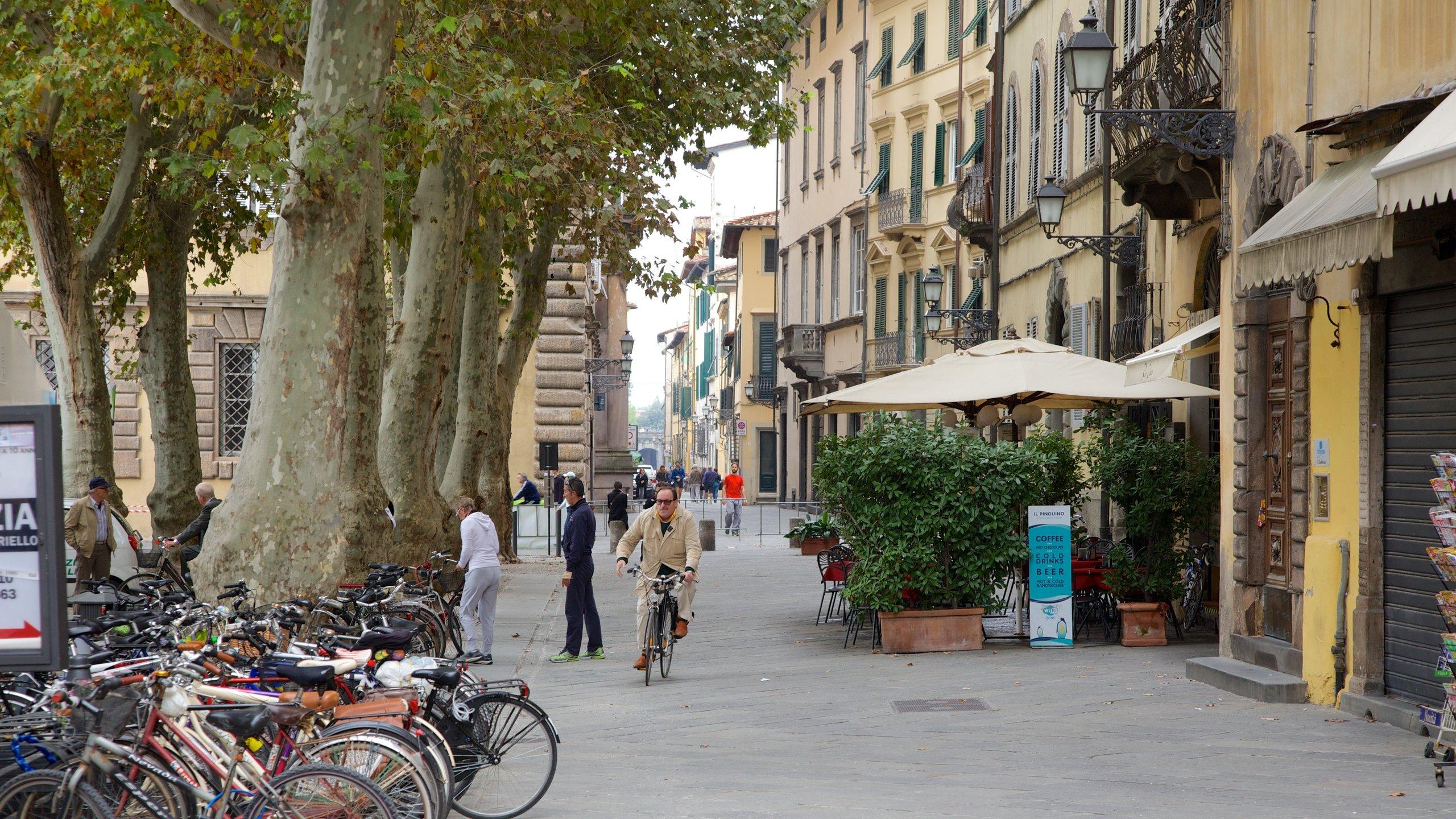 Piazza Napoleone, Lucca, Tuscany, Italy