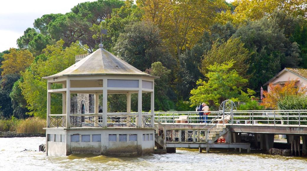 Lac Massaciuccoli mettant en vedette lac ou étang et pont