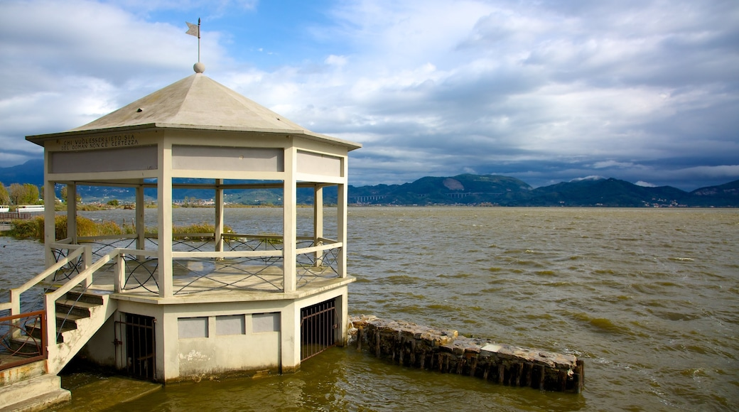 Lago di Massaciuccoli welches beinhaltet See oder Wasserstelle und Skyline