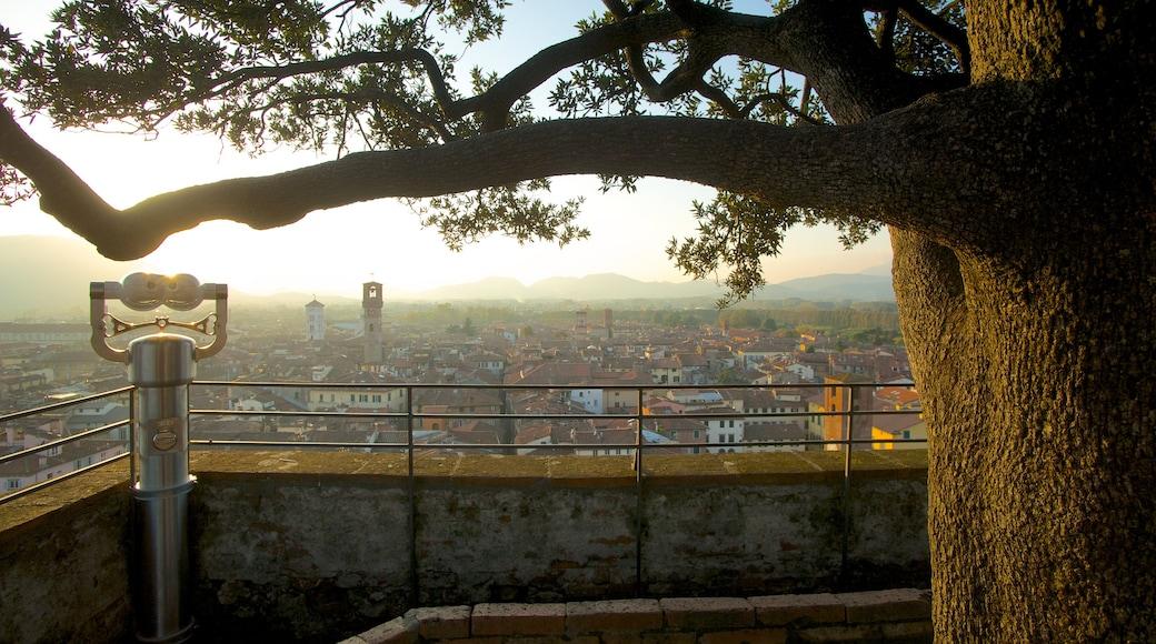 Guinigi Tower welches beinhaltet Stadt, Sonnenuntergang und Ansichten