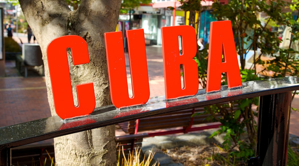 Cuba Street Mall featuring signage