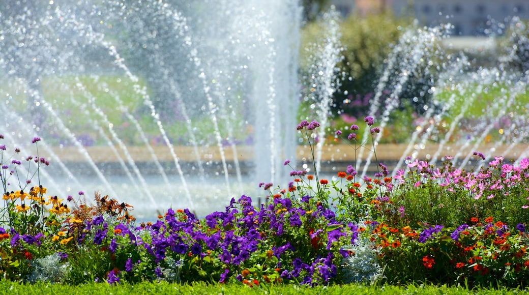 Parc Borely featuring a fountain, a park and flowers