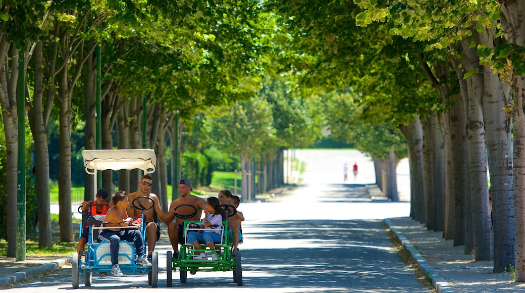 Parc Borely which includes a park and cycling as well as a small group of people