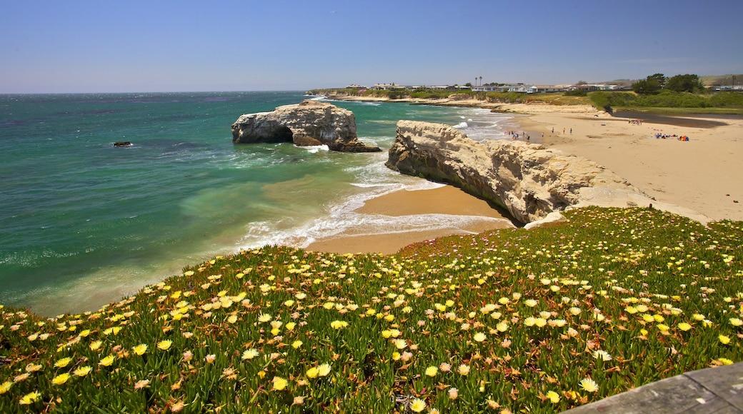 Santa Cruz que inclui litoral acidentado, uma praia de areia e paisagens litorâneas
