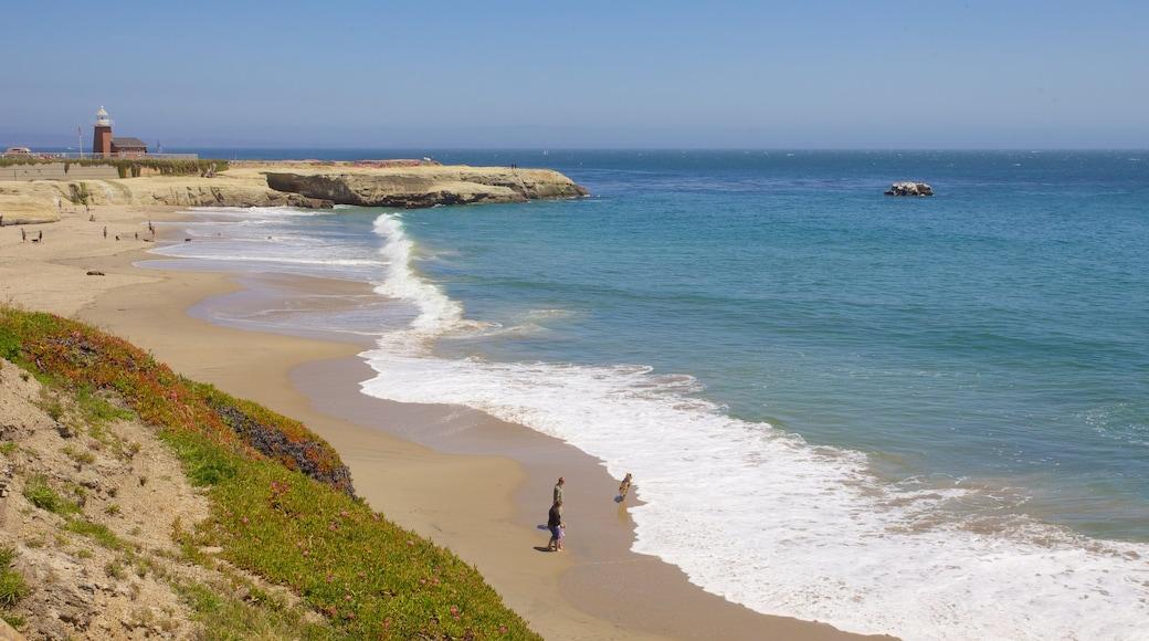 Santa Cruz featuring rugged coastline, general coastal views and a beach