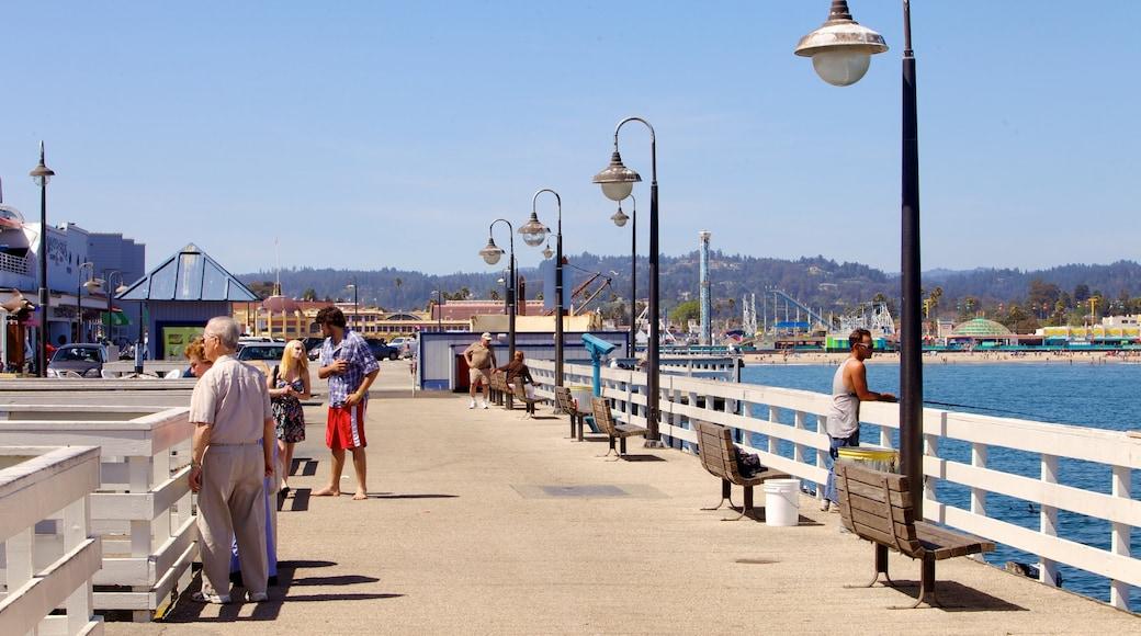 Santa Cruz showing a coastal town, a bay or harbor and views