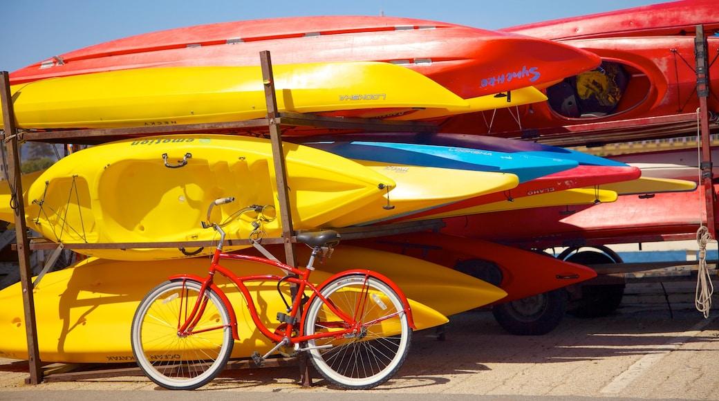 Santa Cruz caracterizando esportes aquáticos