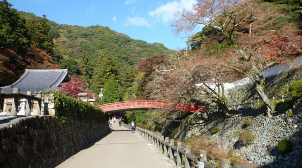 Minoh showing a bridge and a small town or village