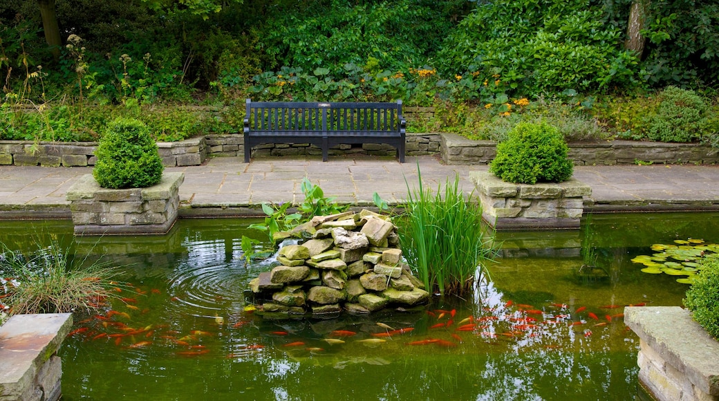 Colchester Castle Park featuring a garden and a pond