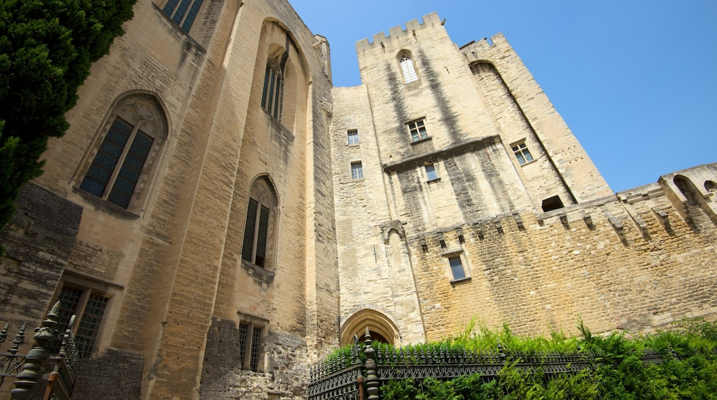 Palais des Papes featuring heritage elements and heritage architecture