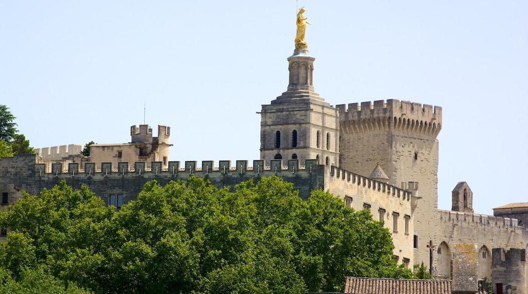 Pont Saint-Bénézet welches beinhaltet historische Architektur, Burg und Geschichtliches