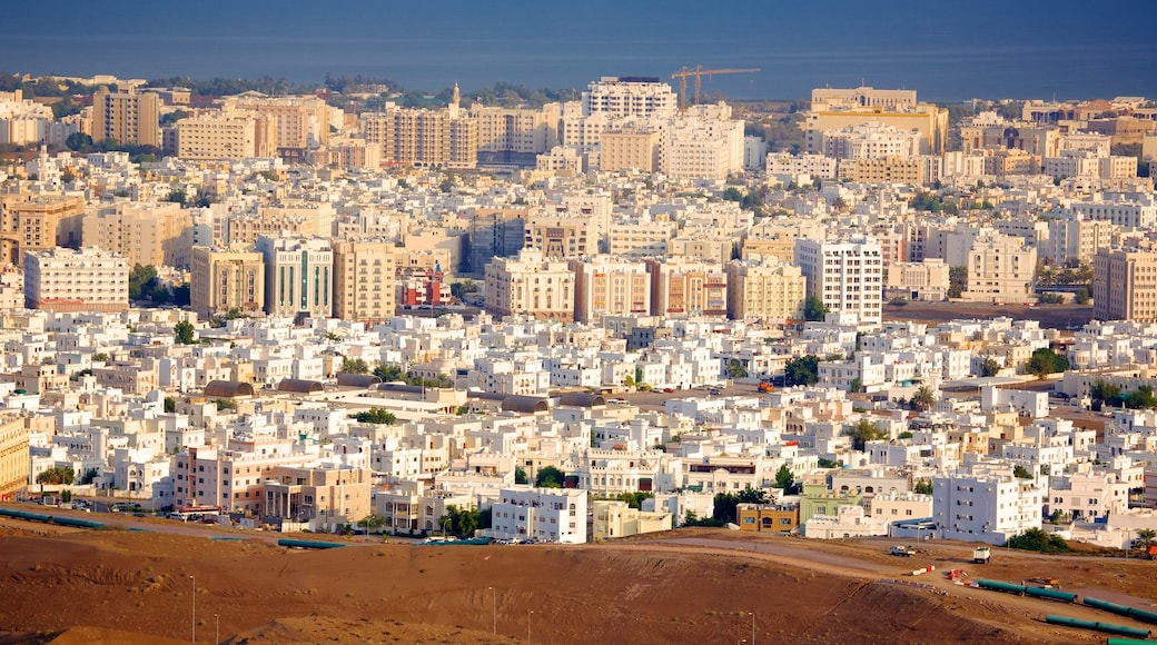 Muscat featuring a city