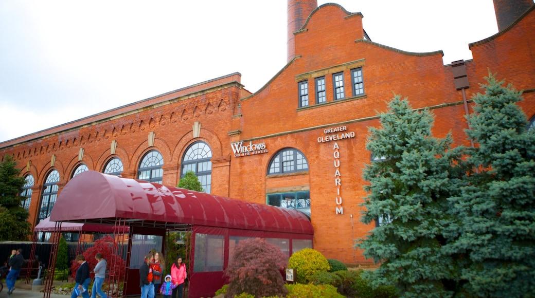 Greater Cleveland Aquarium showing marine life and heritage architecture