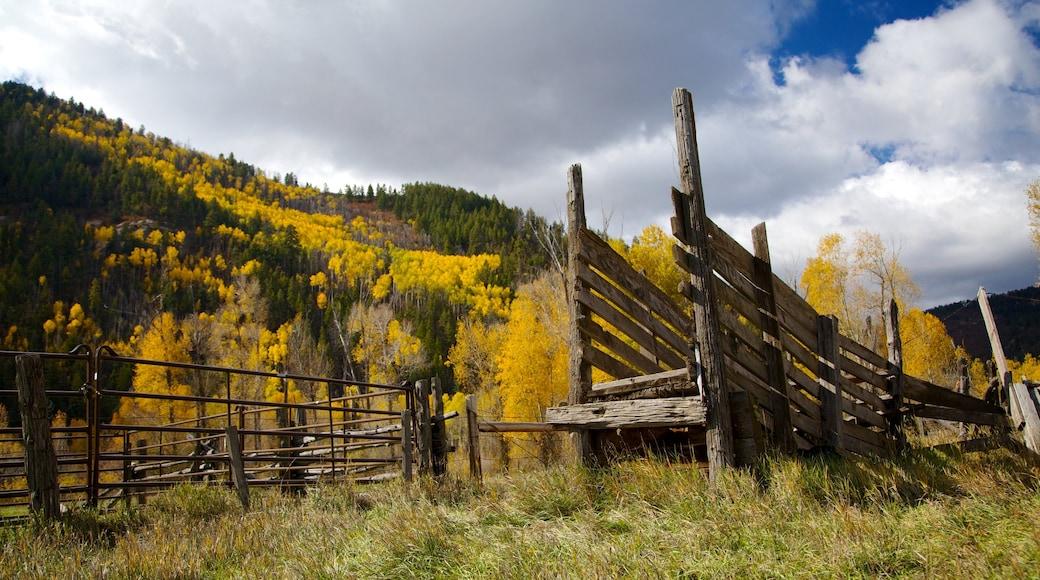 Durango - Purgatory mostrando montañas, escenas tranquilas y colores de otoño