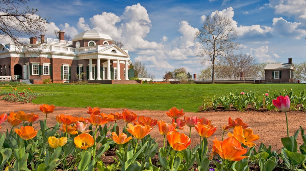 Charlottesville showing heritage architecture, flowers and a garden