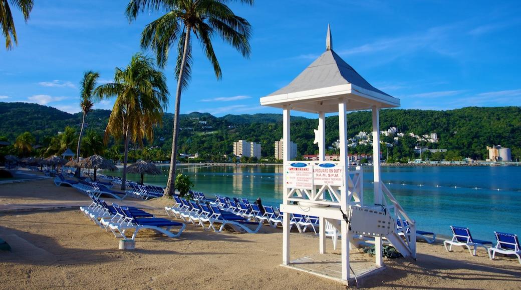 Ocho Rios mettant en vedette hôtel ou complexe de luxe, vues littorales et scènes tropicales