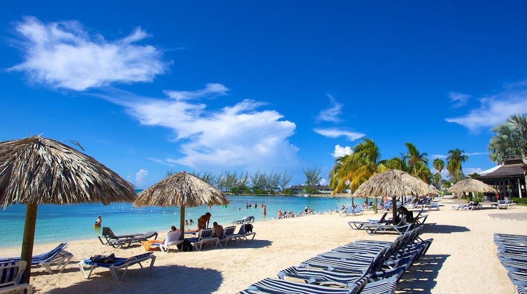 Ocho Rios mettant en vedette plage et scènes tropicales
