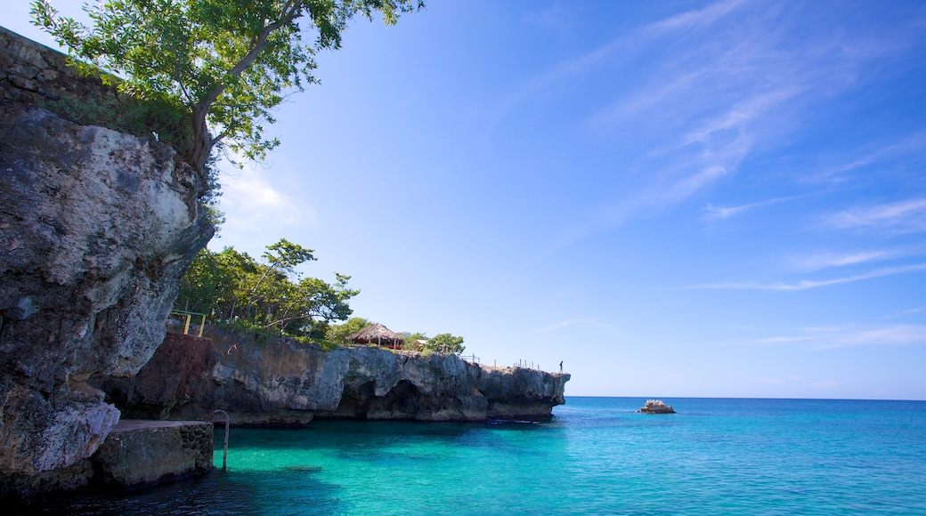 Negril which includes tropical scenes and rocky coastline