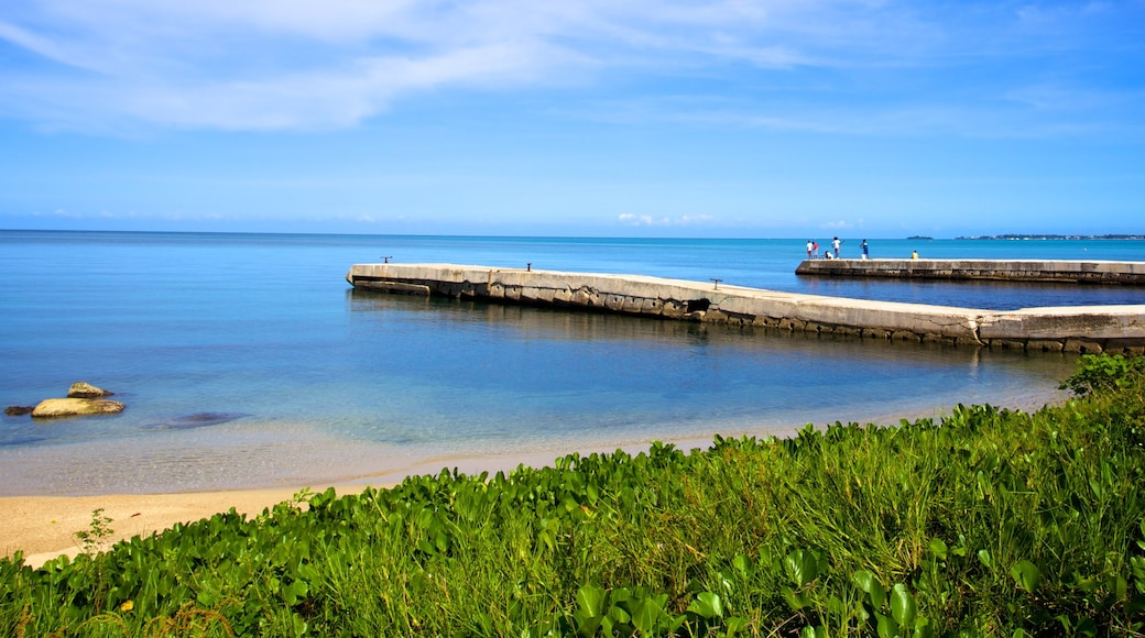 Negril showing tropical scenes and a beach