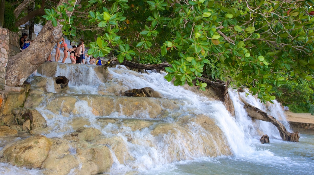 Dunn\'s River Falls featuring rapids and a waterfall