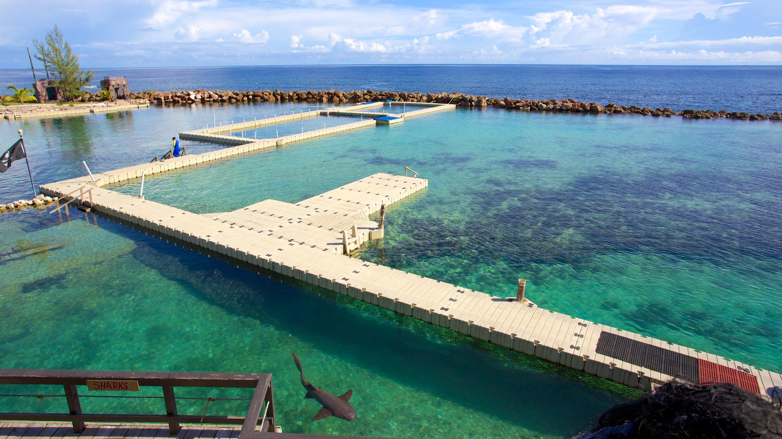 Saint Ann, Jamaica