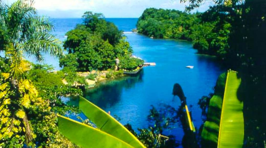 Port Antonio which includes tropical scenes and general coastal views