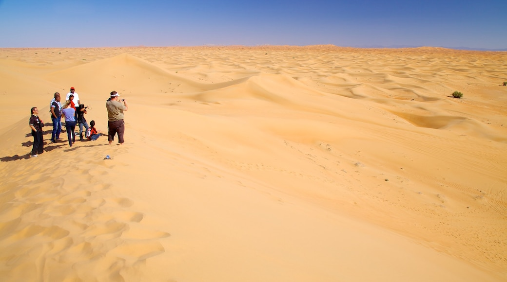 Dubai Desert showing desert views as well as a small group of people