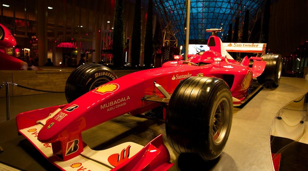 Ferrari World mostrando vista interna