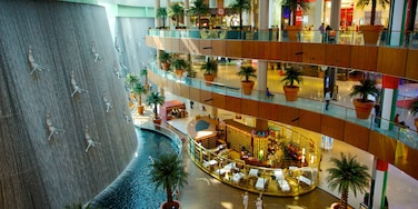 Dubai Mall which includes shopping and interior views