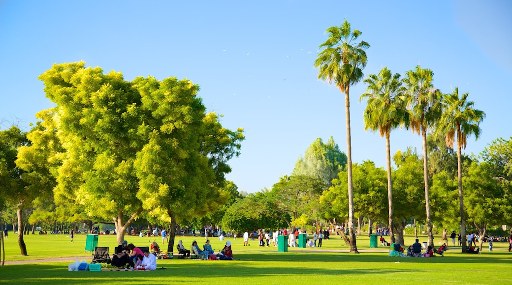 Safa Park featuring a garden and picnicking as well as a large group of people
